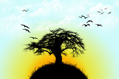 Árvore no monte imagens de stock