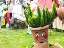 Árvore no potenciômetro no jardim Fotografia de Stock Royalty Free