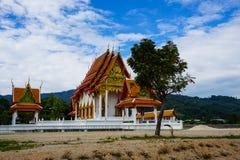 A árvore no templo budista Fotos de Stock Royalty Free