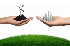 Árvore ou cidade Imagem de Stock Royalty Free