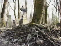 Árvore perto da cruz no cemitério Foto de Stock Royalty Free