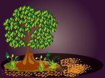 Árvore, plantas e pedras. 1 Fotografia de Stock Royalty Free