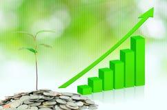 Árvore que cresce em dinheiros Imagens de Stock
