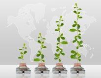 Árvore que cresce no dinheiro Fotografia de Stock Royalty Free