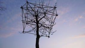 Árvore que dá forma à arte, Alemanha video estoque