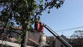 Árvore que poda e que vê por um homem com uma serra de cadeia, estando em uma plataforma de um elevador de cadeira mecânico vídeos de arquivo