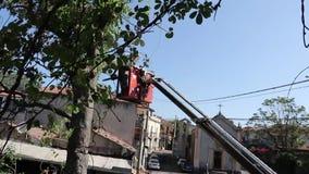 Árvore que poda e que vê por um homem com uma serra de cadeia, estando em uma plataforma de um elevador de cadeira mecânico filme