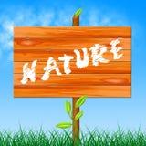 Árvore rural e árvores das mostras naturais da natureza ilustração royalty free