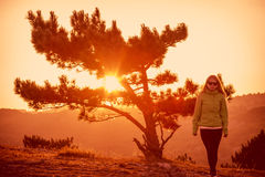 Árvore só na montanha e na mulher Fotografia de Stock