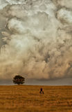 Árvore só nas nuvens. imagens de stock