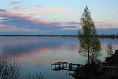 Árvore só no cais velho Lago grande no por do sol do dia fotografia de stock royalty free