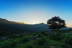 Árvore só no por do sol e no pico de Lekanda Imagem de Stock Royalty Free