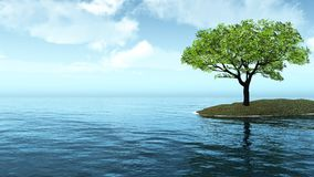 Árvore só pelo mar Fotos de Stock