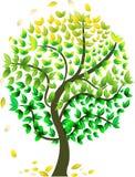 Árvore sazonal abstrata ilustração stock
