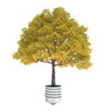 A árvore simboliza a conservação de energia Fotografia de Stock