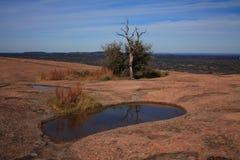Árvore sobre a rocha enchanted imagens de stock royalty free