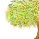Árvore social da rede Símbolo do blogue Crescimento do negócio Fotos de Stock Royalty Free