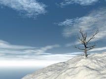 Árvore solitária no inverno ilustração stock