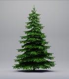 Árvore Spruce no cinza imagens de stock