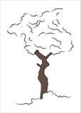 Árvore tirada mão 2 ilustração do vetor