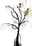 Árvore velha com algumas flores Fotografia de Stock