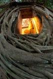 Árvore velha da raiz em torno da igreja tailandesa antiga. foto de stock royalty free
