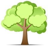 Árvore verde Fotografia de Stock
