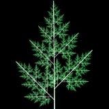 Árvore verde de novo-ano Imagens de Stock