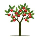 Árvore verde do verão com maçã vermelha Ilustração do vetor Fotos de Stock Royalty Free