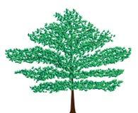 Árvore verde do vetor Foto de Stock Royalty Free