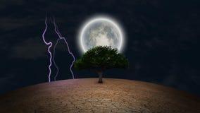 Árvore verde na terra árida ilustração do vetor