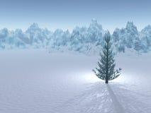 Árvore verde solitária no inverno Fotografia de Stock