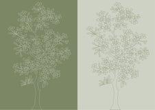 Árvore. Vetor. Imagens de Stock Royalty Free