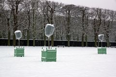 Árvores alaranjadas sob o véu do wintering Fotos de Stock Royalty Free