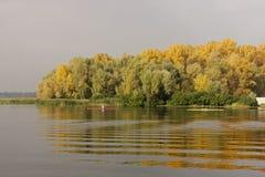 Árvores amareladas refletidas na água Imagens de Stock Royalty Free