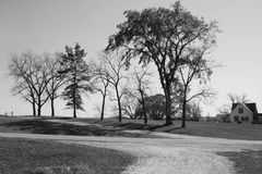 Árvores & casa da quinta Fotografia de Stock