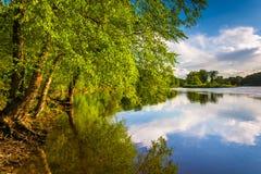Árvores ao longo do Rio Delaware na água Gap de Delaware nacional com referência a Fotos de Stock Royalty Free
