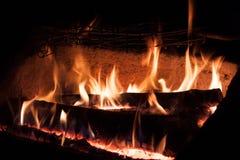 Árvores ardentes Imagens de Stock Royalty Free
