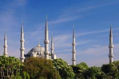 Árvores azuis da mesquita e de castanha fotos de stock royalty free
