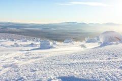 Árvores cobertos de neve em inclinações de montanha em um dia ensolarado brilhante foto de stock
