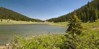 Árvores Colorado Poudre do lago e de pinho imagens de stock
