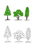 Árvores com folhas ilustração do vetor