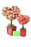 Árvores comemorativos sob a forma do coração Imagens de Stock Royalty Free