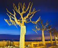 Árvores congeladas Imagens de Stock Royalty Free