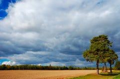 Árvores contra o céu fantástico fotografia de stock