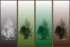 Árvores da estação Imagens de Stock