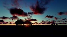 Árvores da guitarra sobre o oceano, nascer do sol de Timelapse com voo dos pássaros filme
