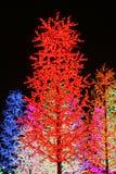 Árvores da luz artificial fotografia de stock royalty free