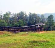 Árvores da ponte de madeira e árvores e cenário natural fotografia de stock royalty free