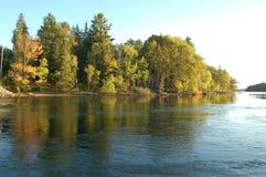 Árvores da queda perto da água Imagens de Stock
